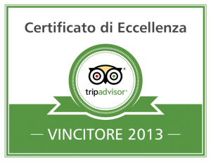 Excellence-Badge_2013_it