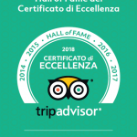 hall of fame tripadvisor fino 2018